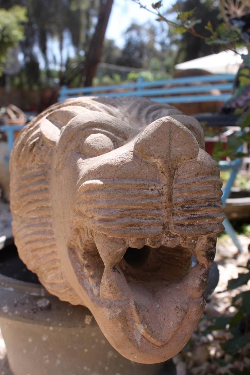 אלמנט מים בצורת ראש אריה