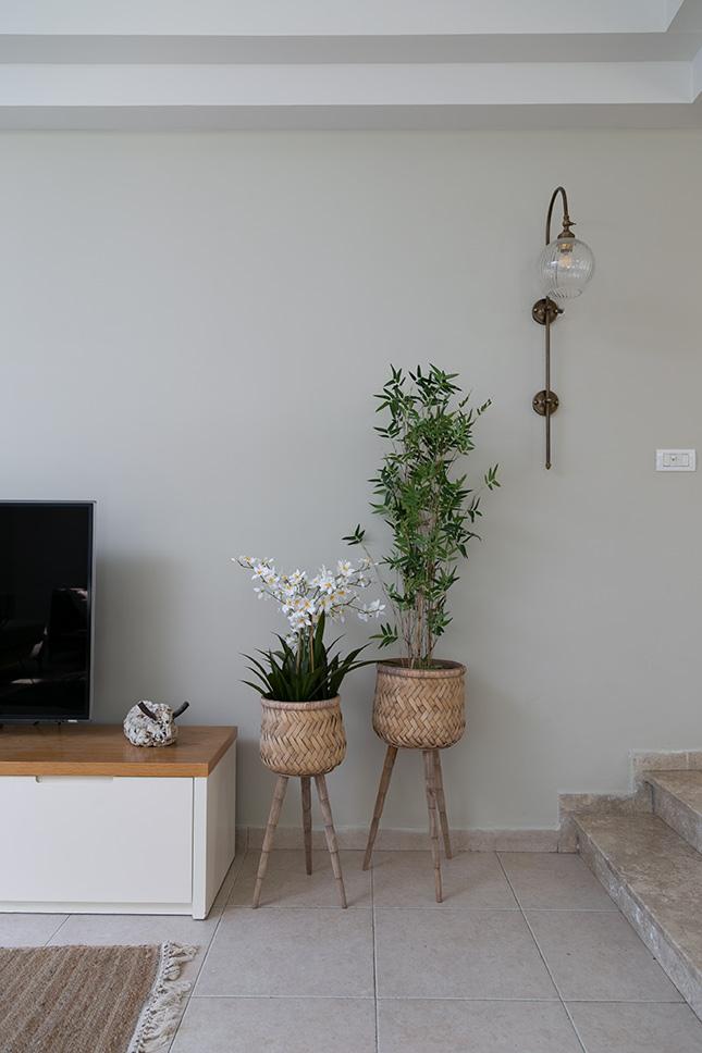 אקססוריז ועציצים לסלון
